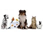 Консумативи за животни