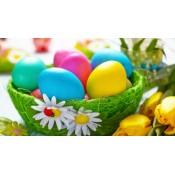 Egg paints