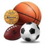 Спортни топки