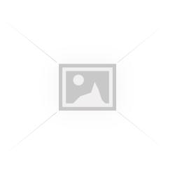 КОМПРЕСОР ЗА ВЪЗДУХ /ЛИМИТИРАНА СЕРИЯ/ 25L 2.5 НР С ЕДИН МАНОМЕТЪР И ДВА ИЗХОДА ЗА ВЪЗДУХ